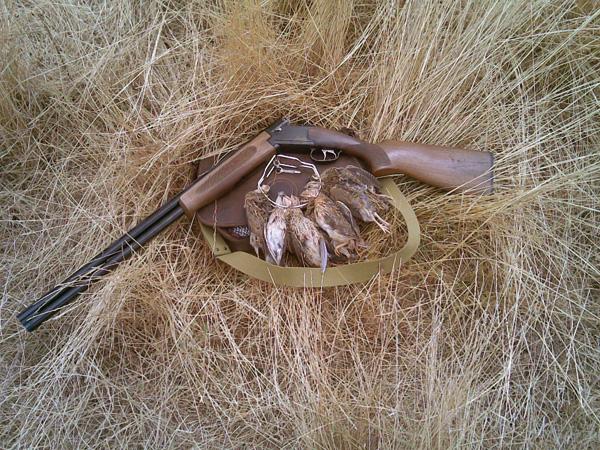 Los cazadores de ADECANA preparan la media veda en Navarra