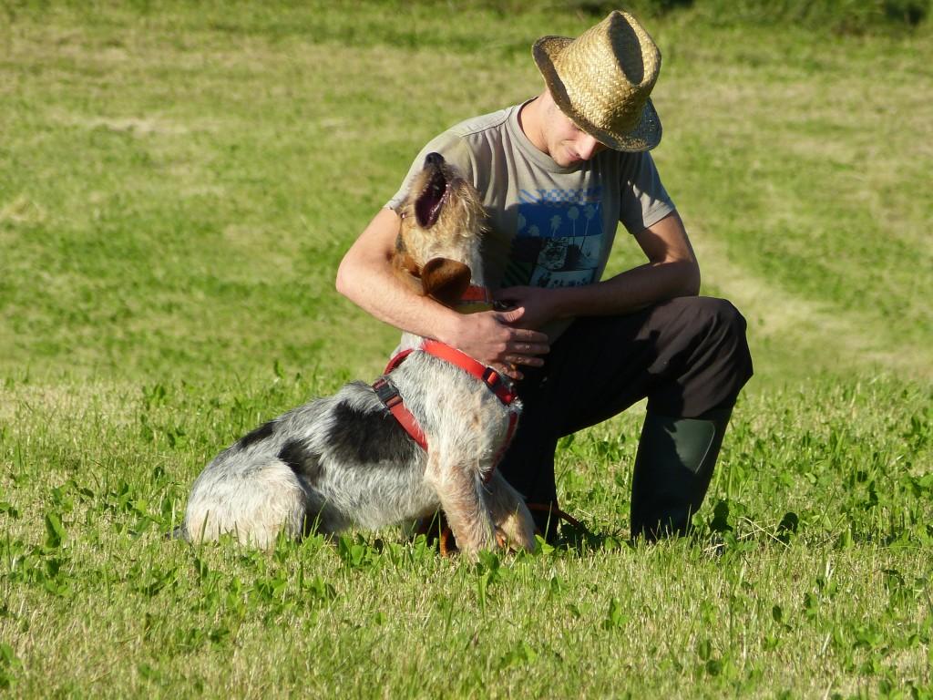 campeonato perros rastro