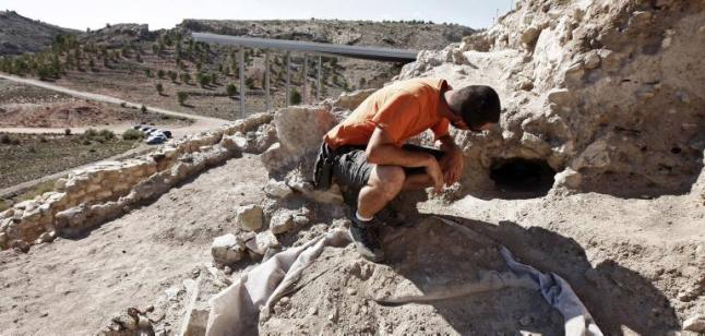 plaga-conejos en yacimiento arqueológico