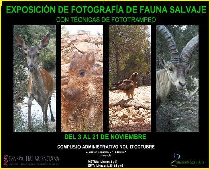 Exposición de fotografías fototrampeo