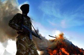 Kenia quemará todas las incautaciones de marfil