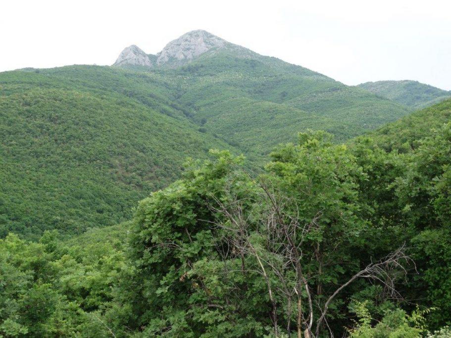 macedonia paisaje