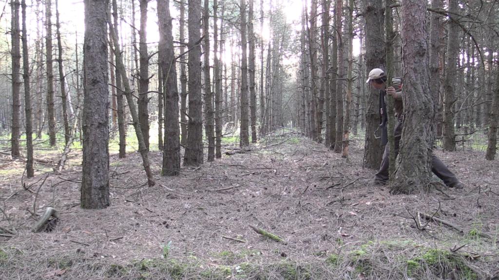 cazador rececho en un bosque de hilera