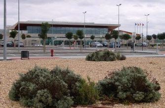 Cazadores de Francia, Italia y EEUU usan el Aeropuerto de Albacete