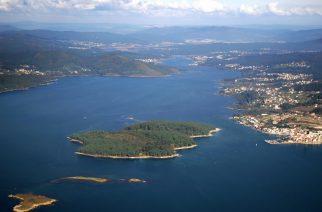 Cortegada: jabalíes de mar en la isla desierta
