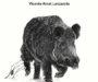'Días de campo, caza y fogones', segundo libro de Vicente Amat Lanzarote