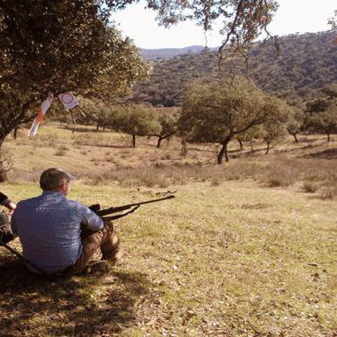oferta pública de caza