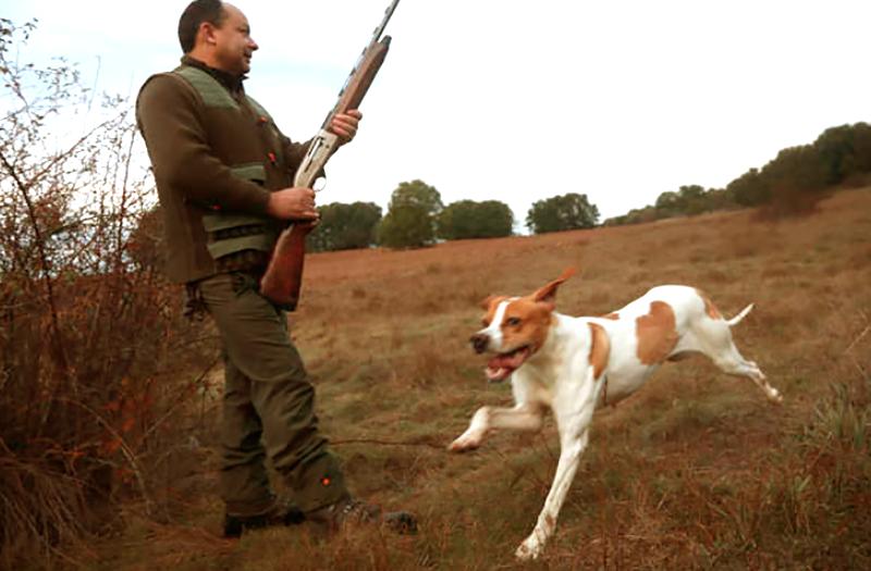 caza menor cuarta petición