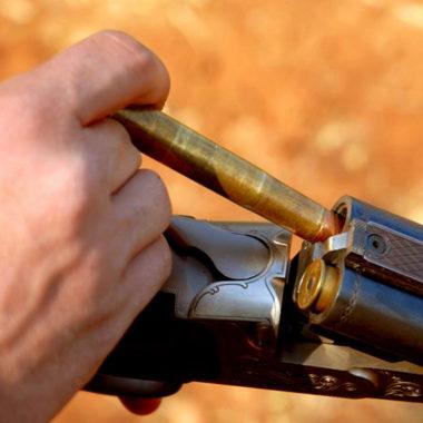 Grandes calibres africanos