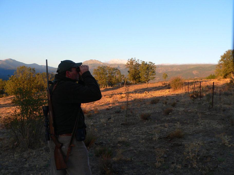 La caza durante