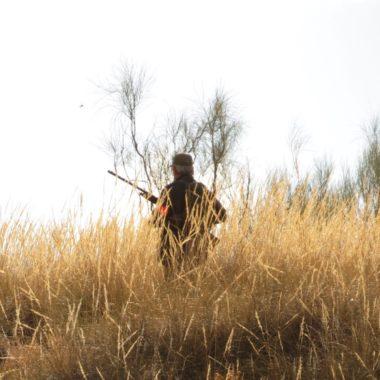 colectivo cazador