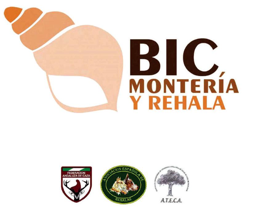 BIC Andalucía