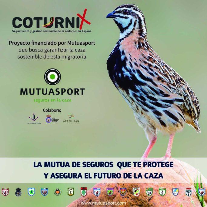 Mutuasport COTURNIX