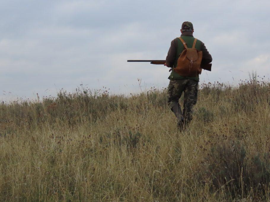 actualiza los protocolos caza