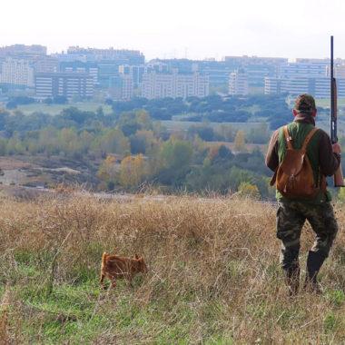 Antropología de la caza