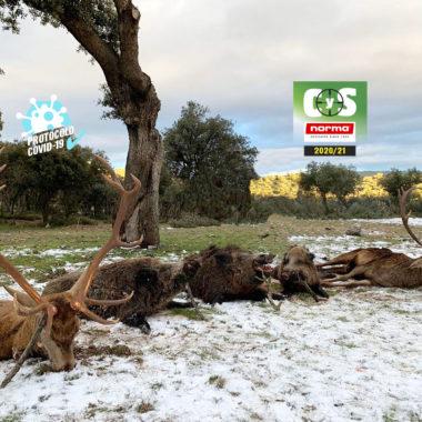 Torreón de Armenteros