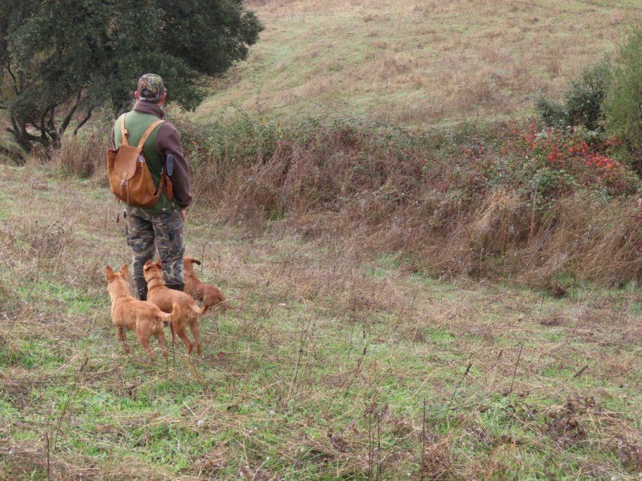 caza Castilla-La Mancha impide cazadores