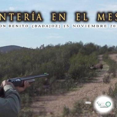 El Mesto