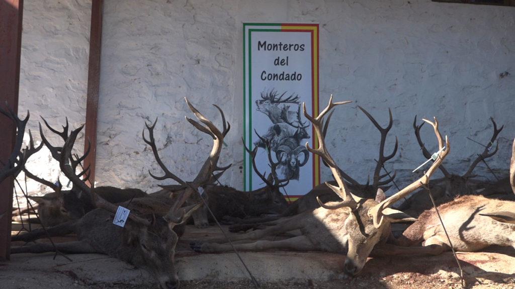 Monteros del Condado