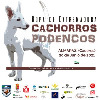 Copa de Extremadura de Trabajo para Cachorros de Podenco Andaluz