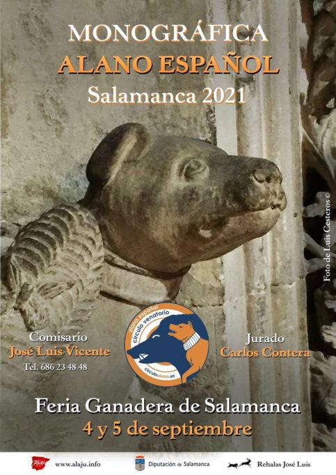 Día del alano en Salamanca