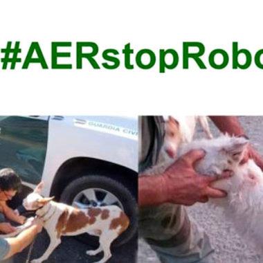 AER STOP robo de perros.