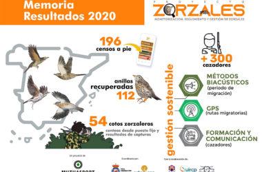 Proyecto Zorzales aves